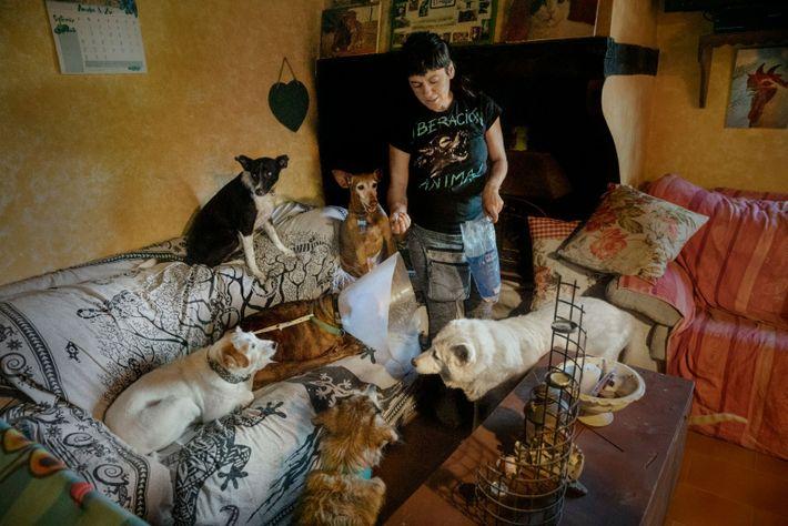 Elena Tova da comida a los animales