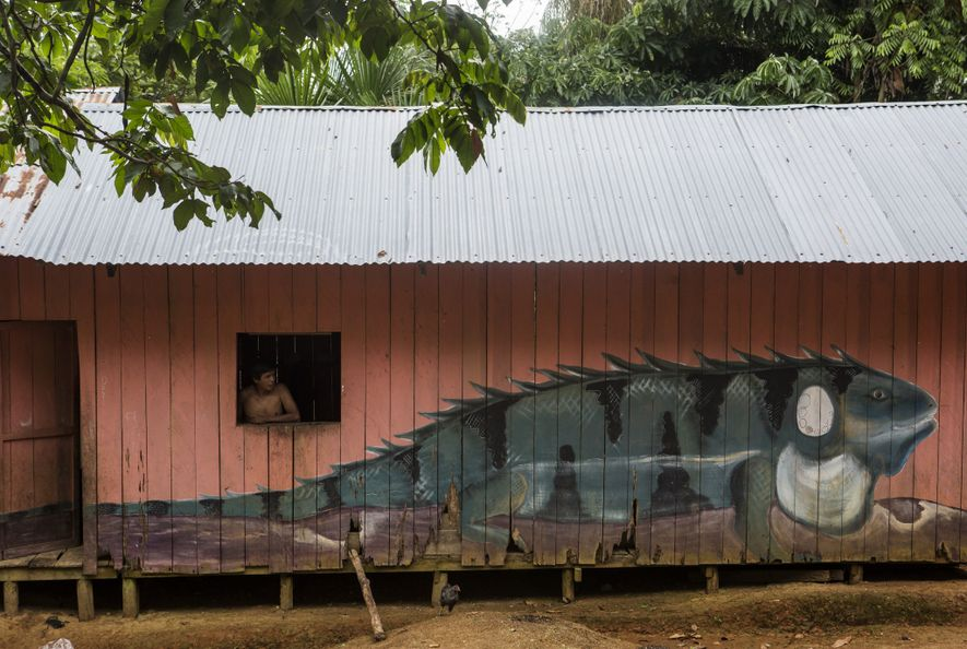 Una iguana