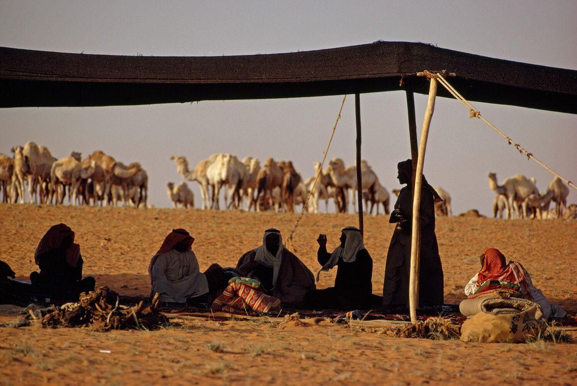 Beduinos, Arabia Saudí
