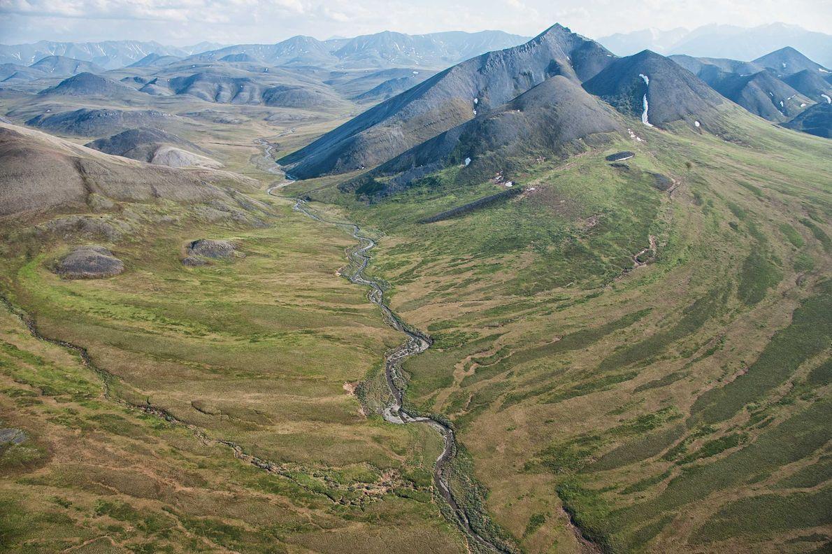 Refugio nacional de fauna del Ártico