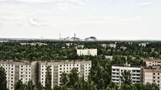 El desastre de Chernóbil cumple 32 años con una explosión de vida silvestre