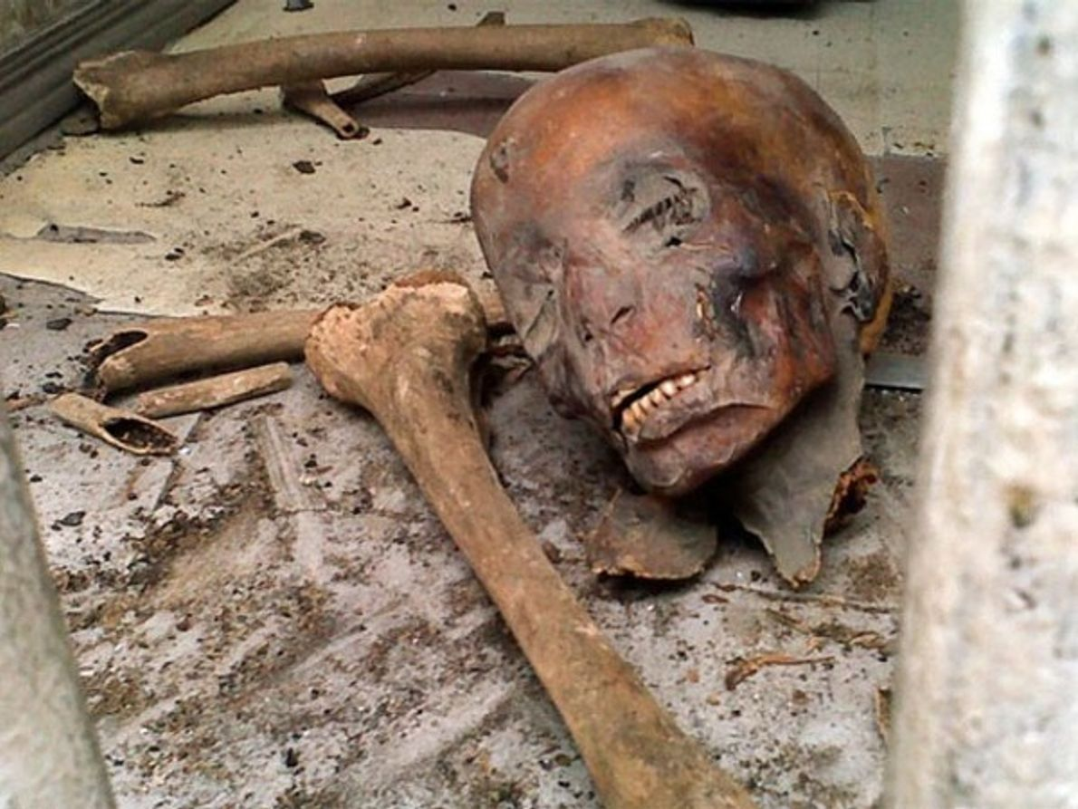 Momia del museo del Cairo destrozada