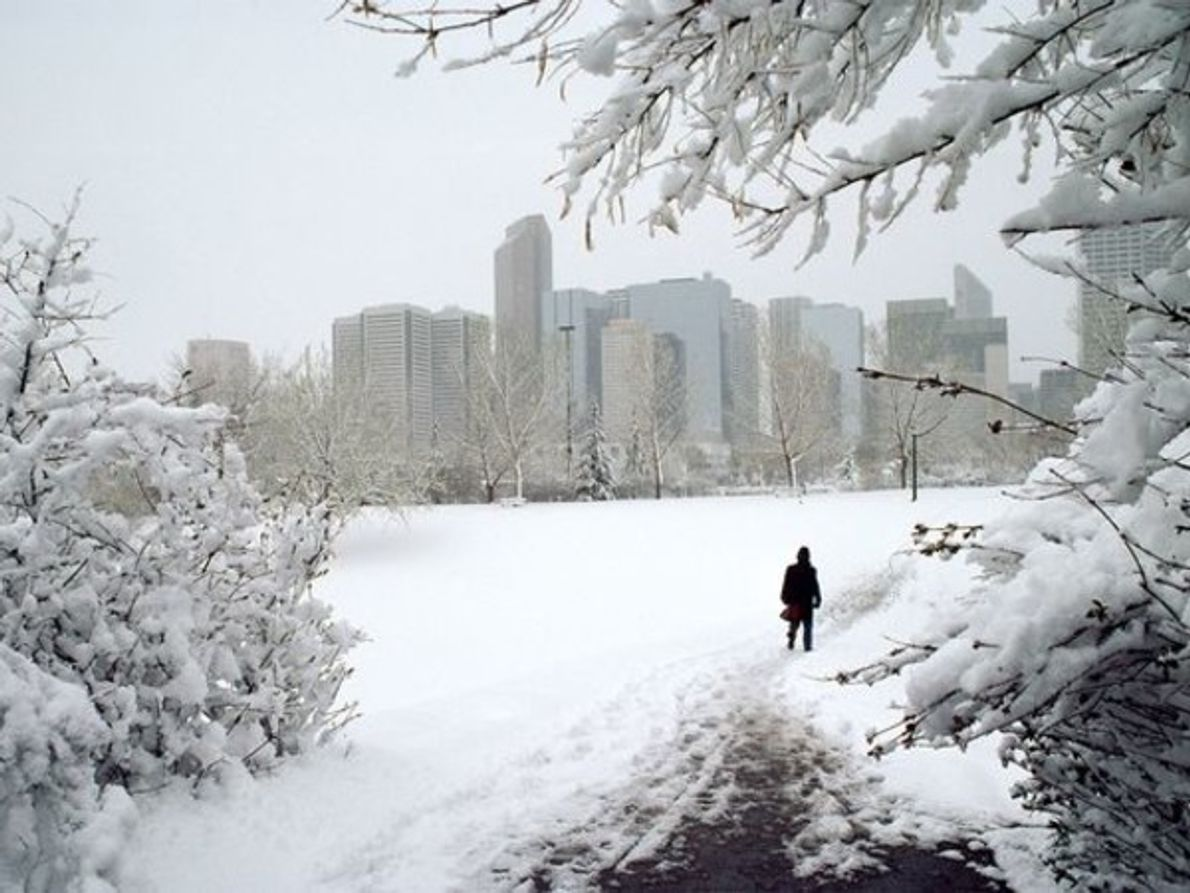 Calgary, Canadá, es responsable de la emisión de cerca de 18 toneladas de CO2 y metano …