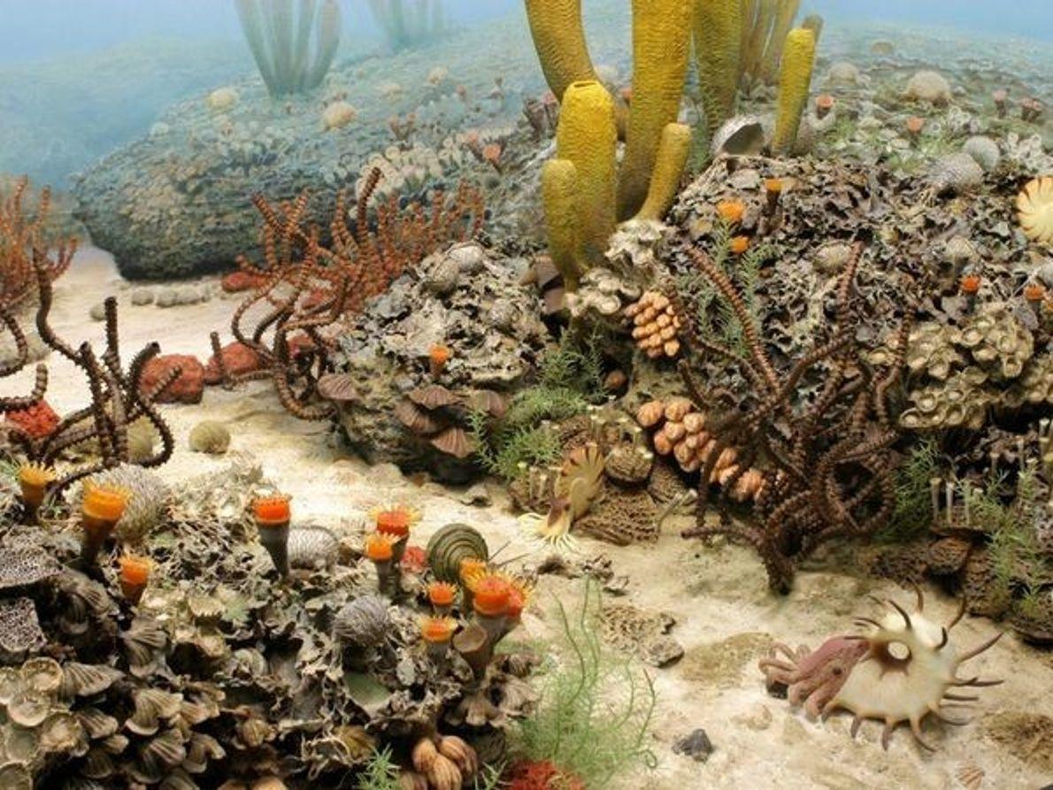 Fondo marino del Periodo Pérmico