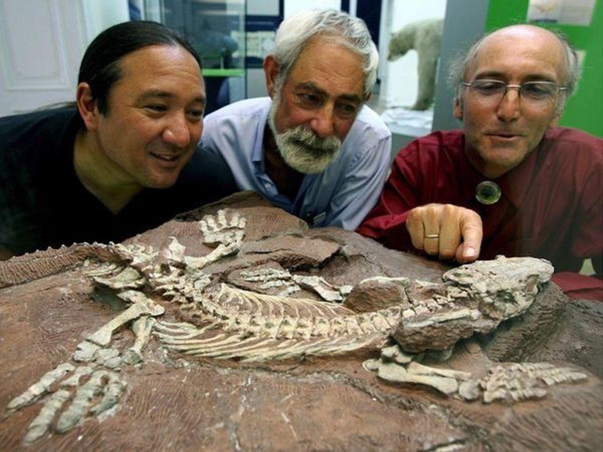 Paleontólogos con fósiles