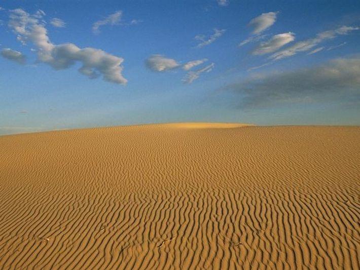 Cuenca del Pérmico