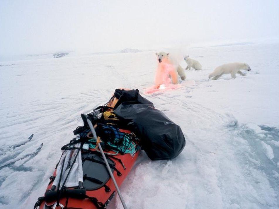 Fotos de archivo de nuestros exploradores más aventureros
