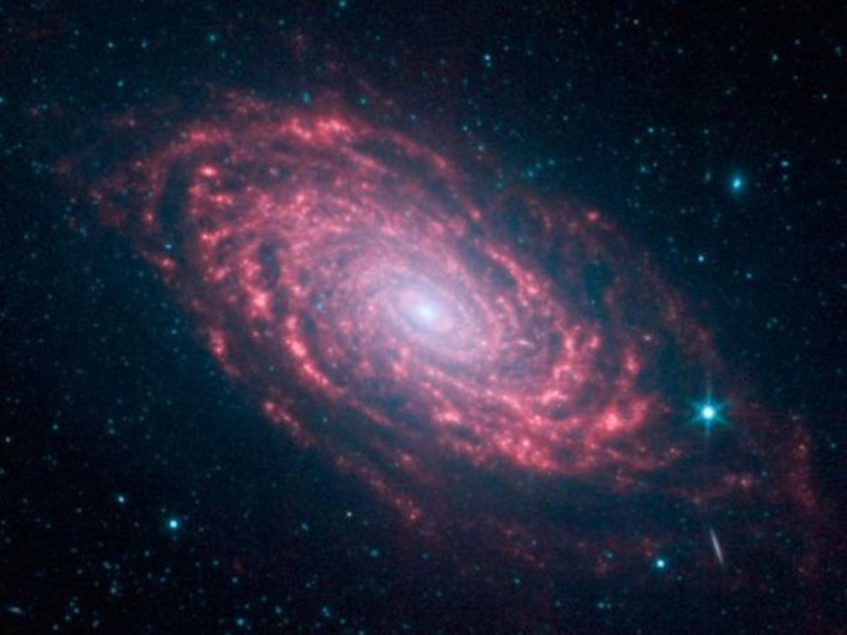 Galaxia Girasol de color rosa