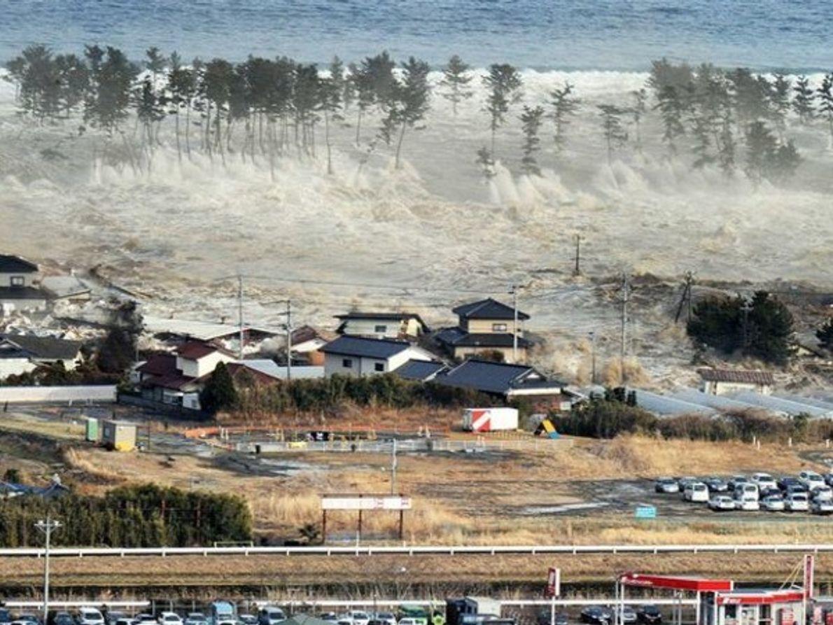 Japón tras la catástrofe