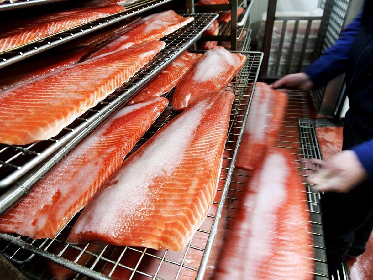 Mercado de pescado, Tasmania