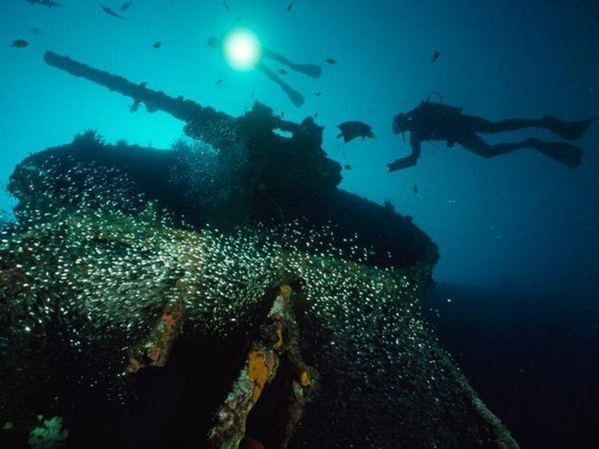 Submarinistas nadan alrededor de un cañón del U.S.S. President Coolidge cerca de la isla Espíritu Santo …