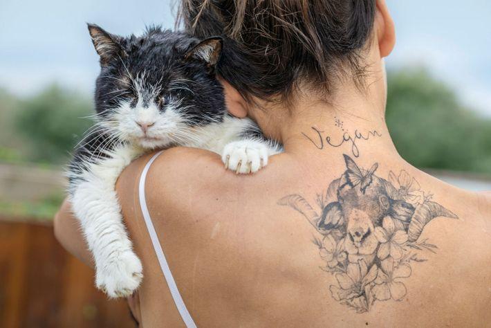Bichi, un gato ciego y sin dientes, en el hombro de Elena Tova