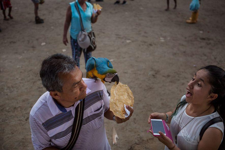 Una pareja alimenta a un guacamayo