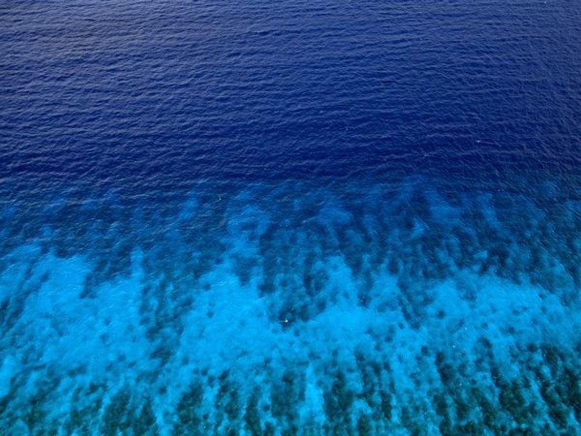 Mar Caribe (Belice)