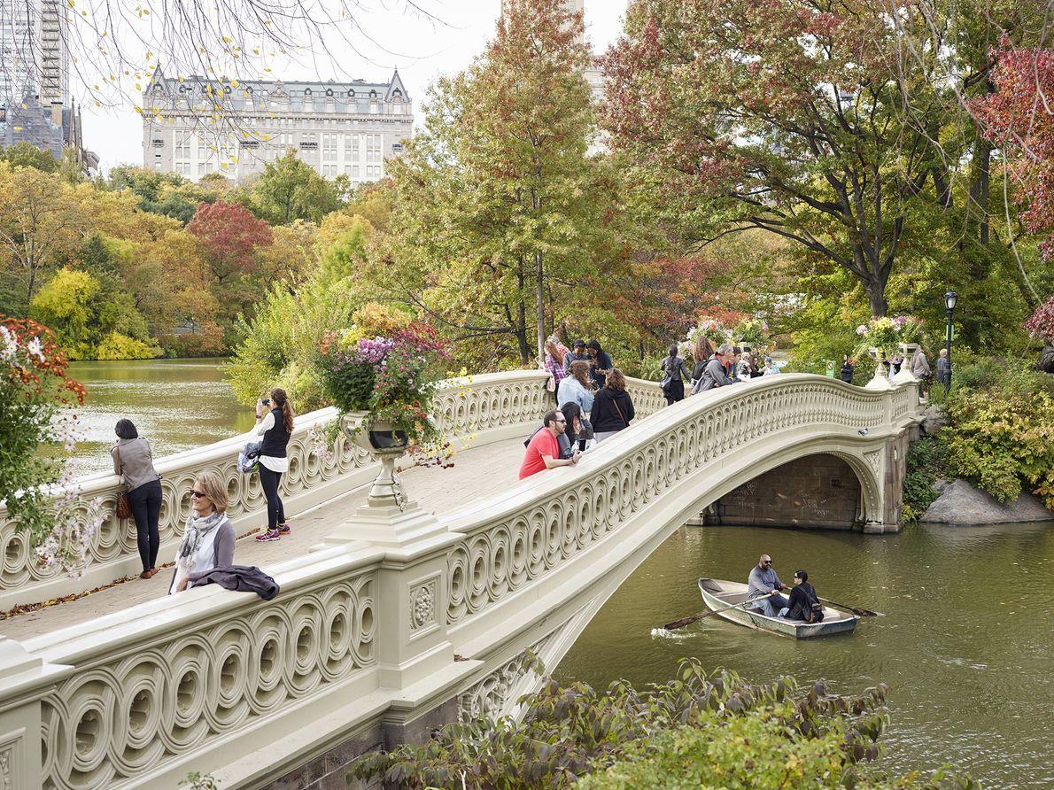 Bow Bridge, Central Park, Nueva York