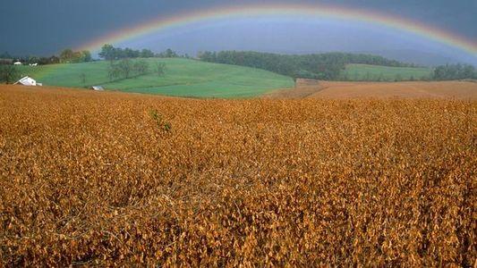Dibujos de la naturaleza: arcoíris