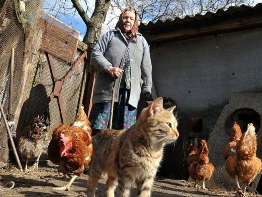 Esta mujer de 73 años de edad ha vuelto a la aldea abandonada de Paryshiv a ...