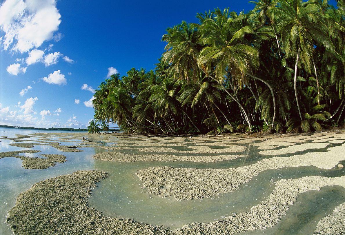 Reserva natural nacional del atolón de Palmyra