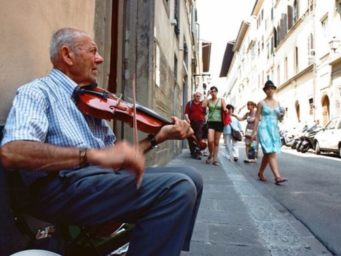 Violinista, Florenia.