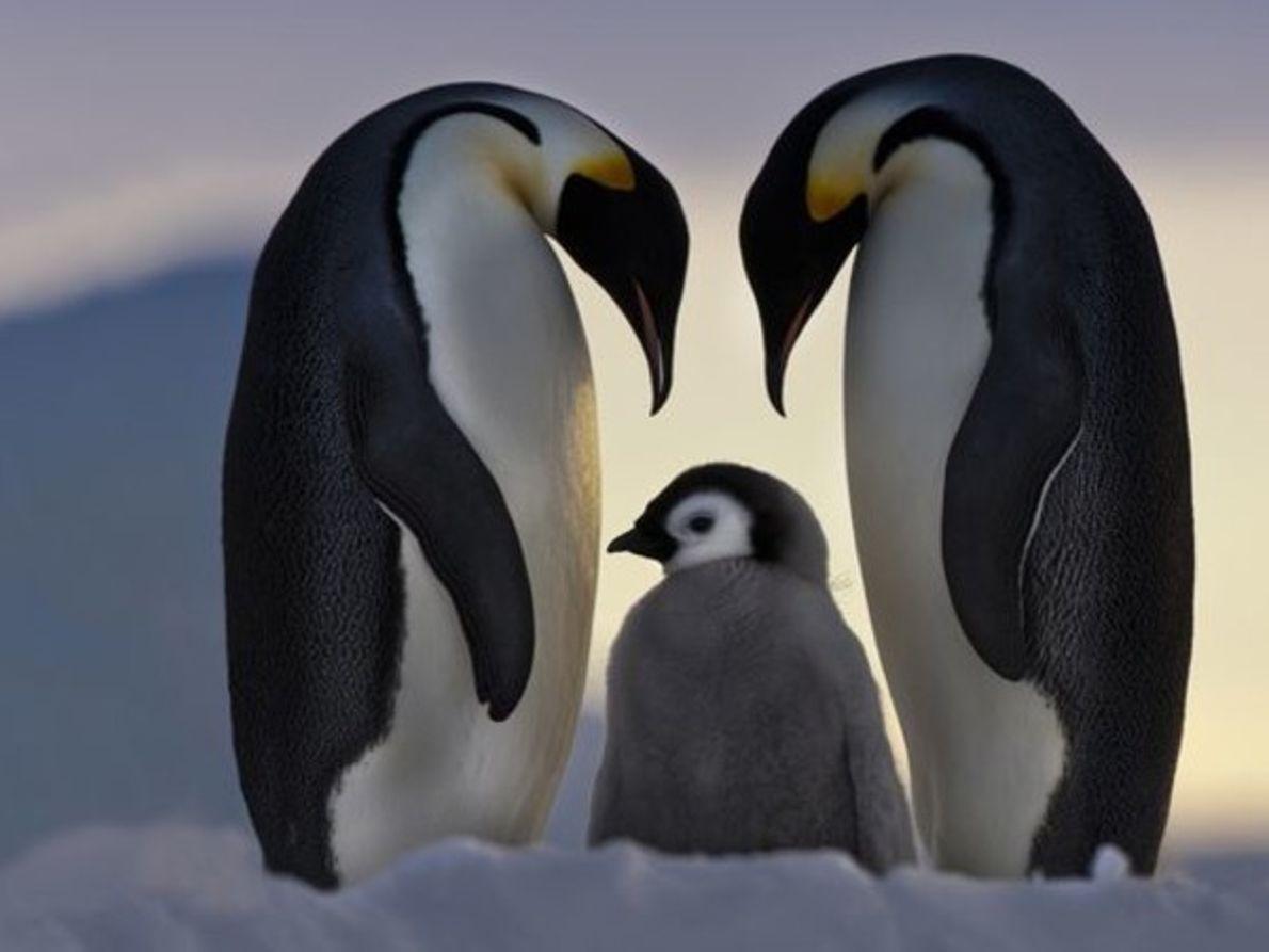 ¿Quieres conocer a los animales más adorables?