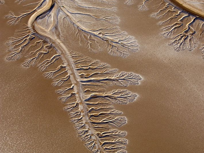 Delta del río Colorado
