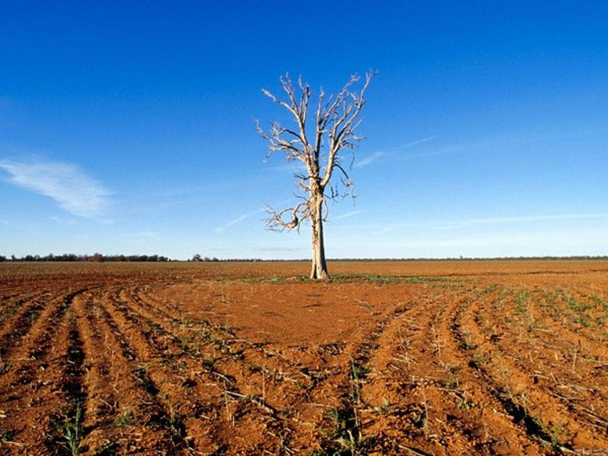 Sequía en el interior de Australia