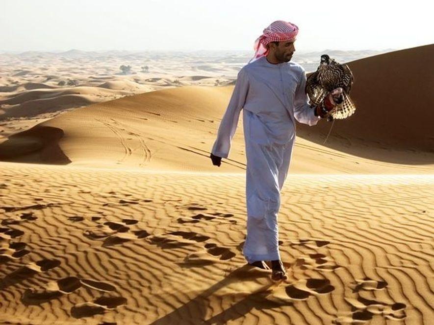 Practicado históricamente por los beduinos, la cetrería se ha convertido en un pasatiempo popular en Abu ...