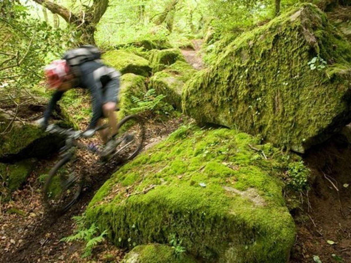 Parque Nacional de Dartmoor, Inglaterra