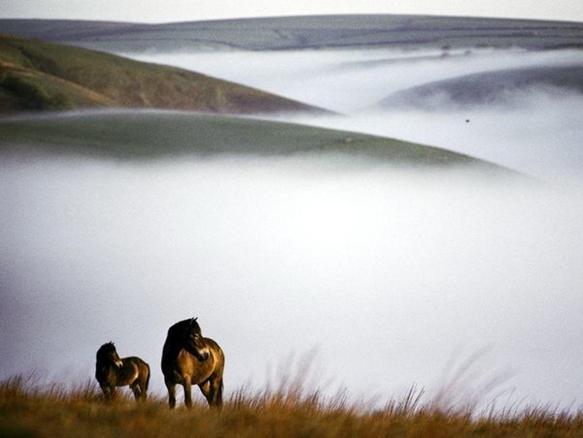 Parque nacional de Exmoor, Inglaterra