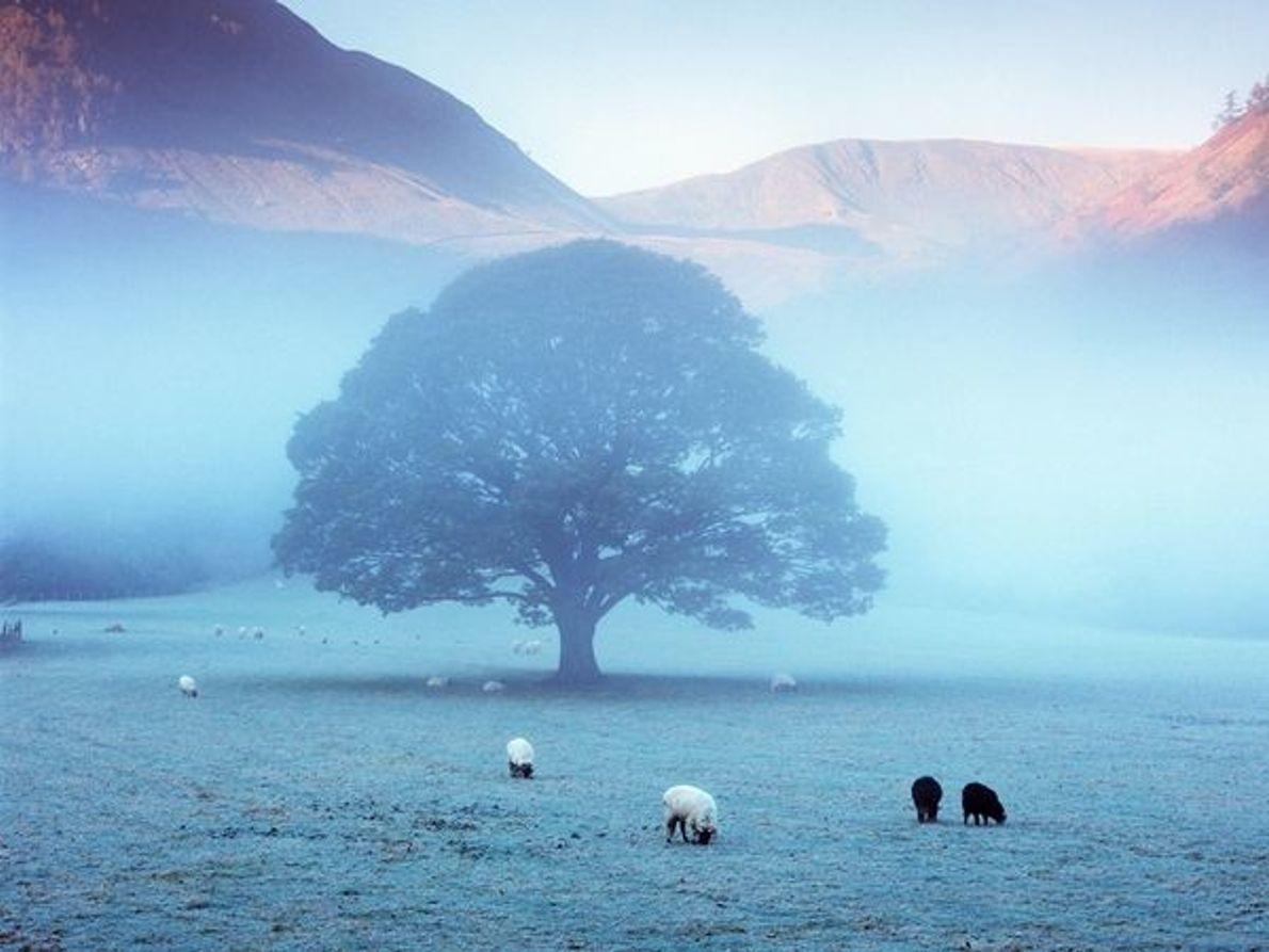 Parque Nacional del Distrito, Inglaterra