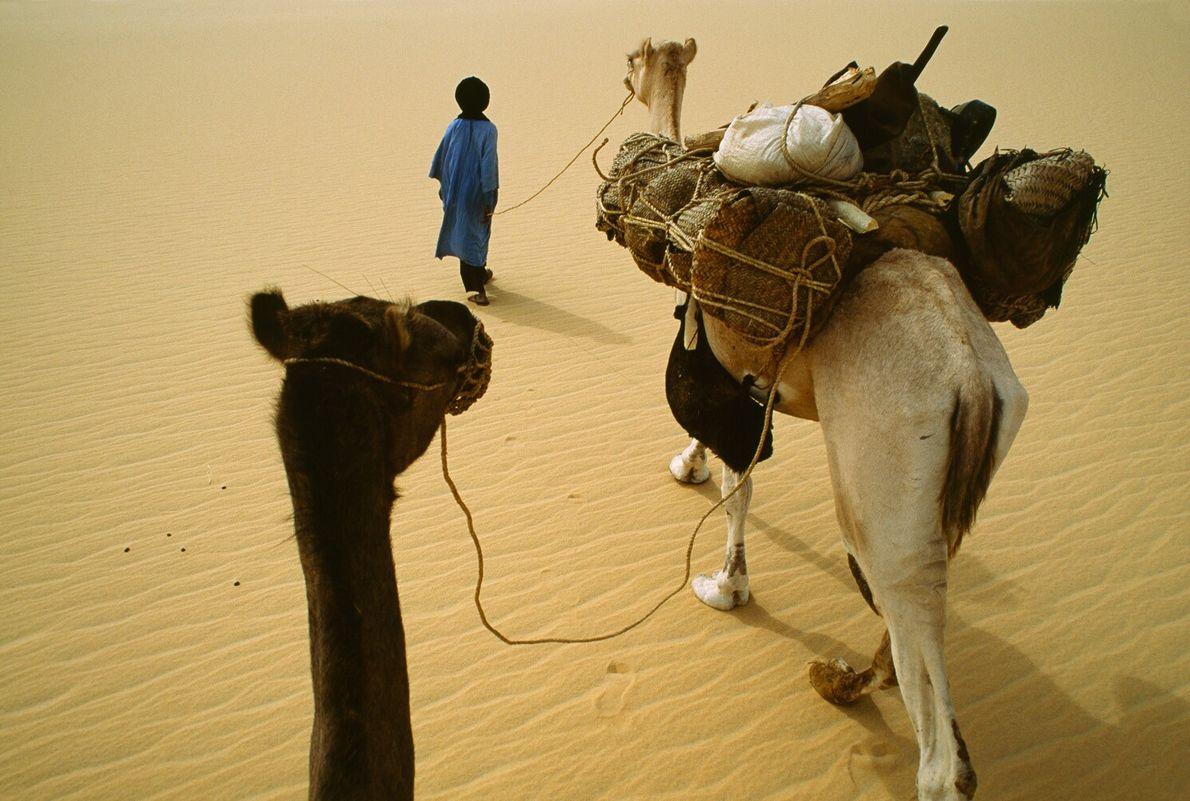 Un tuareg en el Sáhara