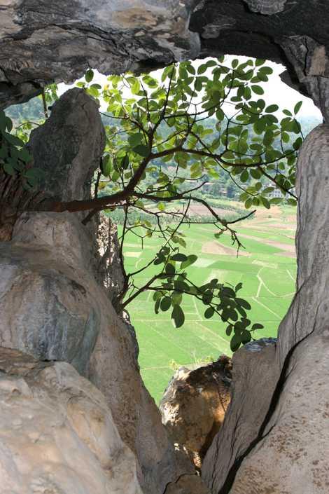 Vista desde la entrada de la cueva del Gigantopithecus en Chuifeng (China).