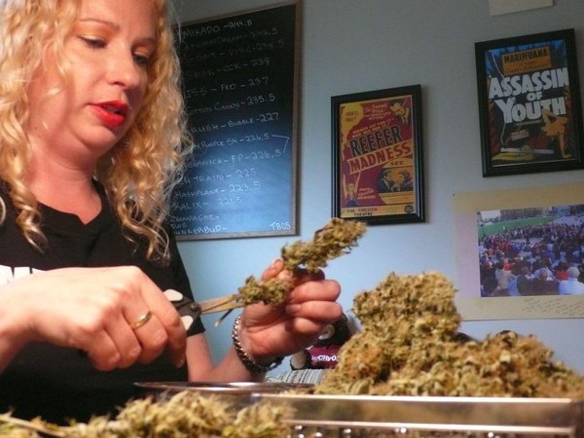 Dentro de…: La Marihuana