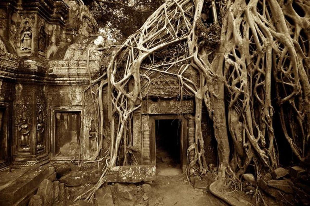 Templo de Ta Prahm