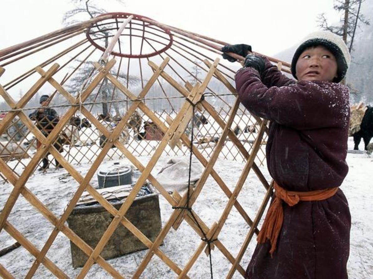 Migración de Invierno, Mongolia