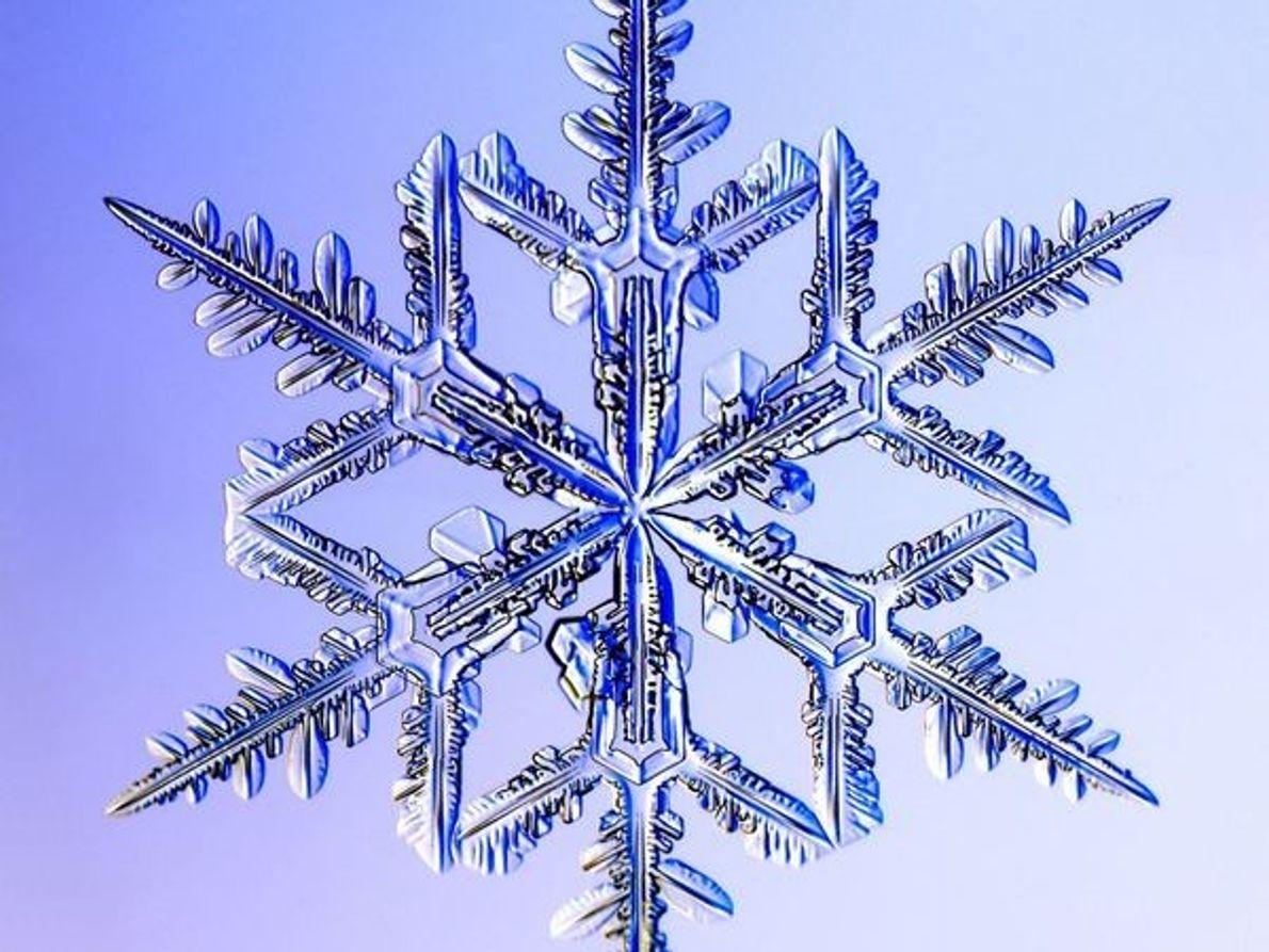 Copo de nieve dendrite