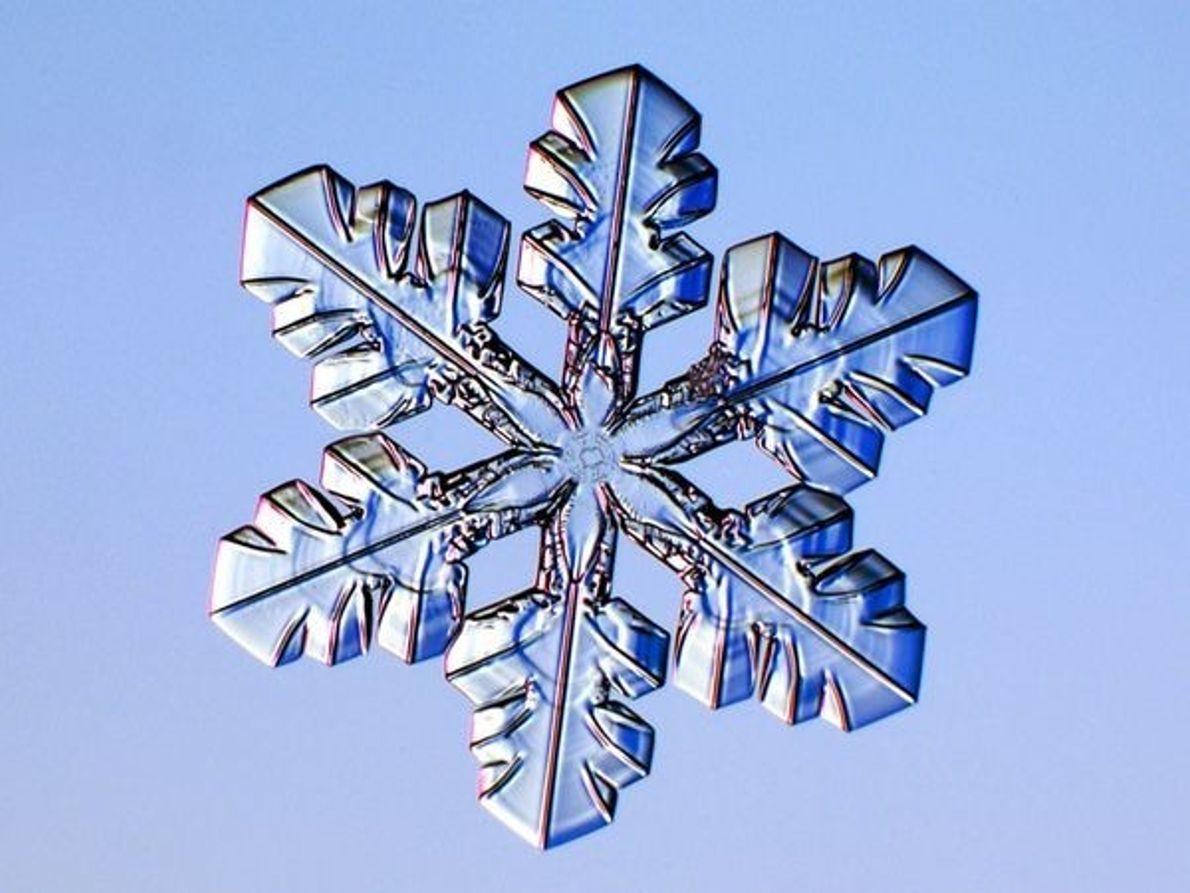 Copo de nieve de placas
