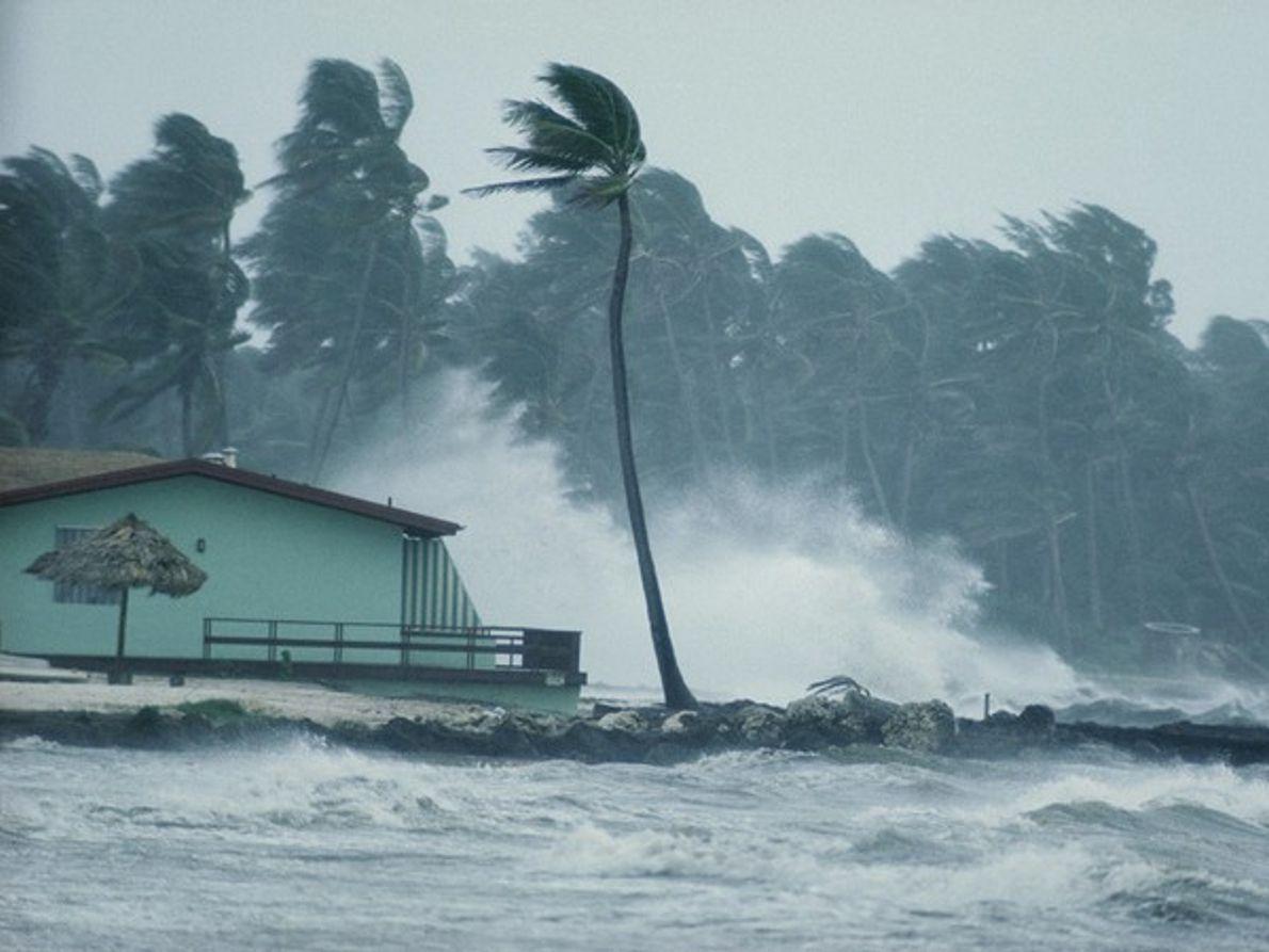 Viento y lluvia en Florida