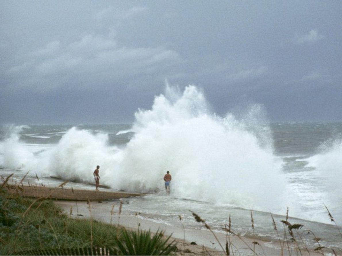 Surfeando un huracán