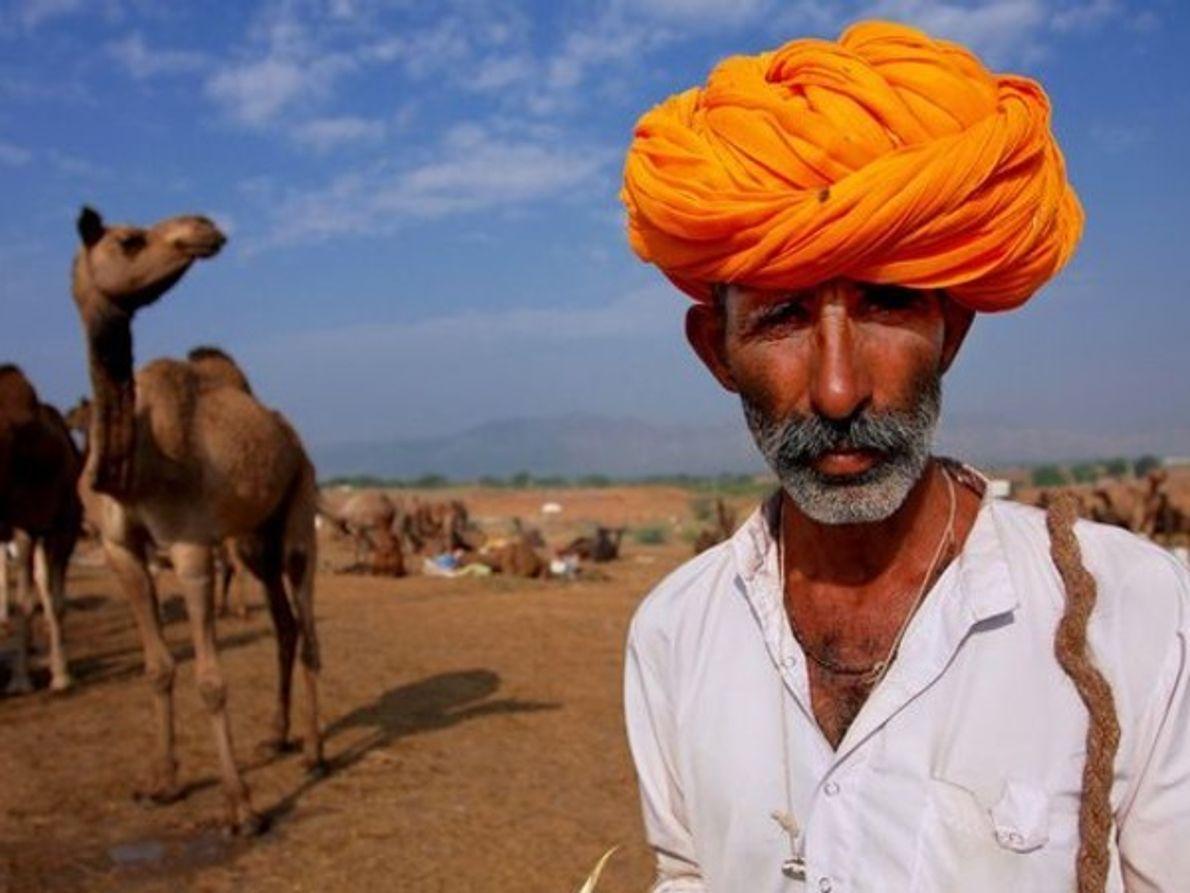 Vendedor de camellos, India