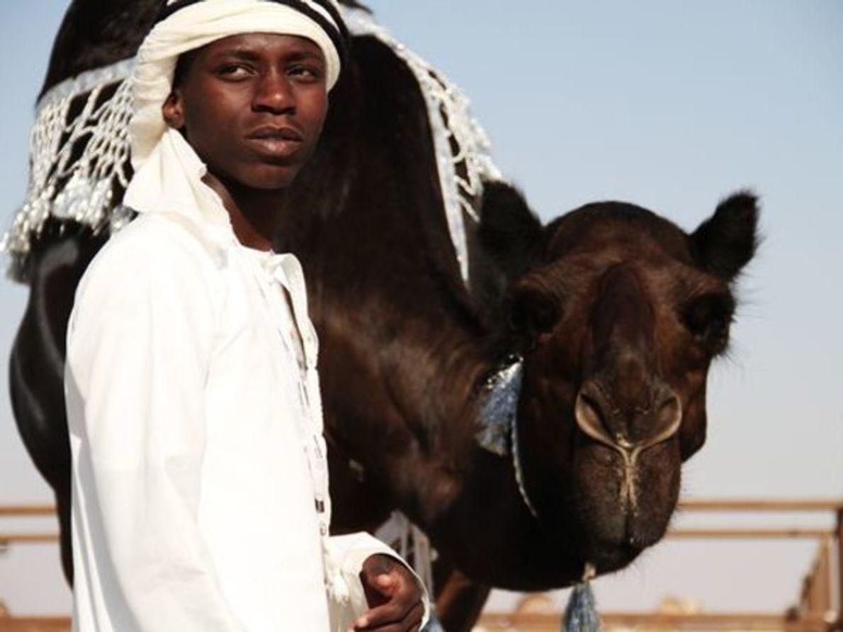 Manejador de camello, Abu Dhabi