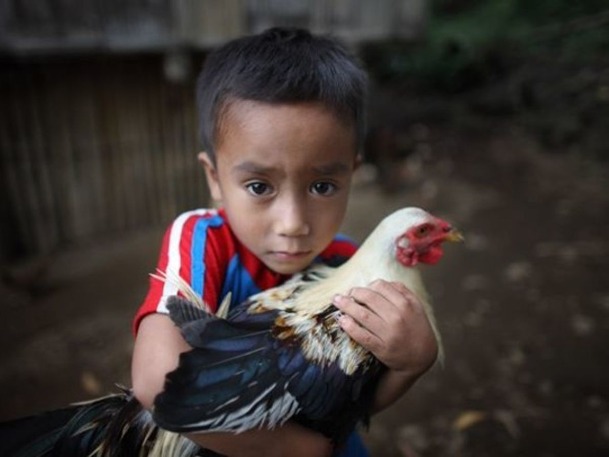 Chico joven, Filipinas