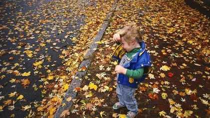 Imágenes de otoño