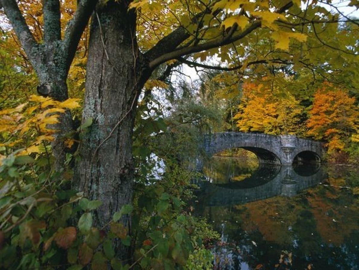 Puente de Cooperstown