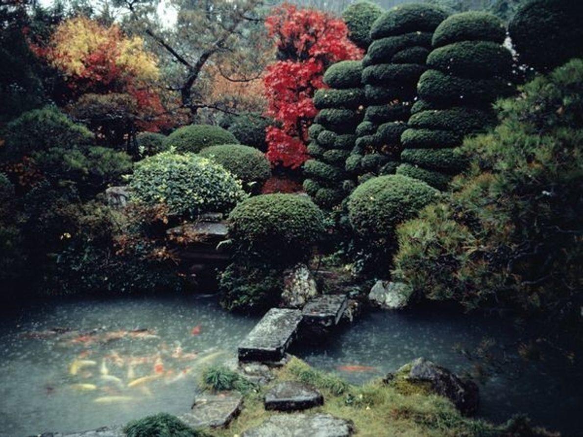 Jardín Hagi