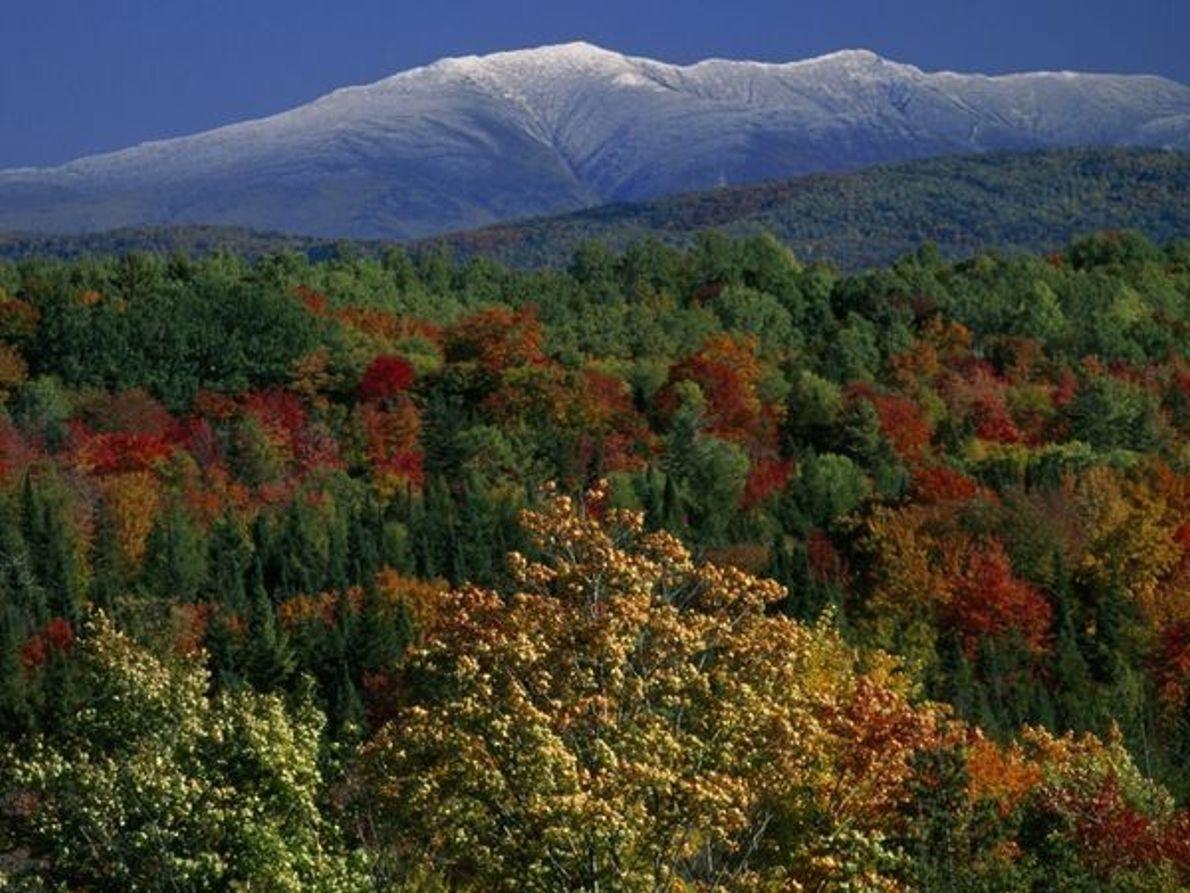 Montañas Blancas