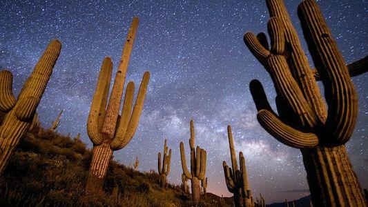 Consejos de fotografía: fotografiar el cielo nocturno
