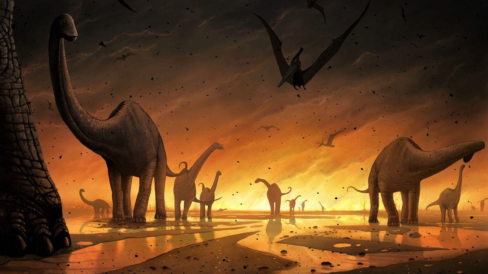 Ilustración dinosaurios