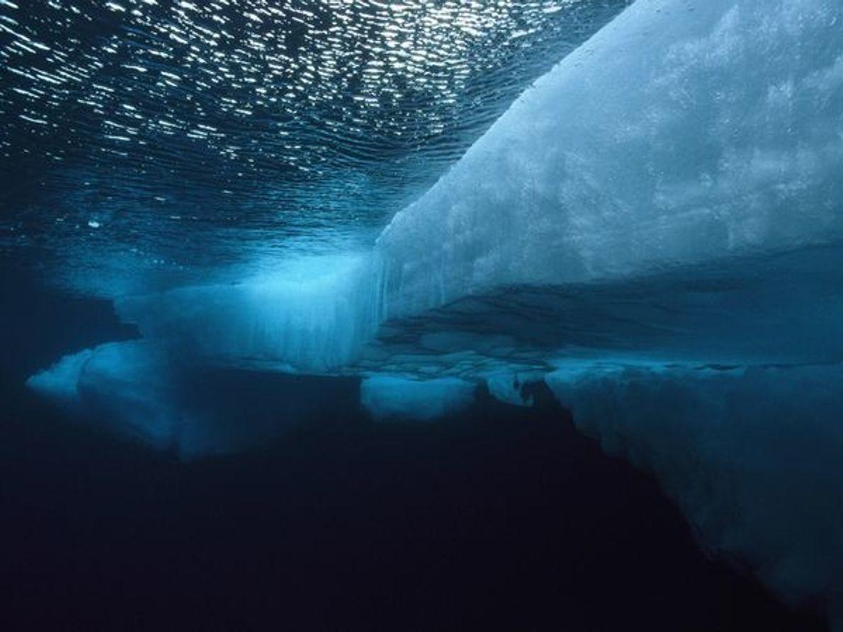 Témpano de hielo del Ártico