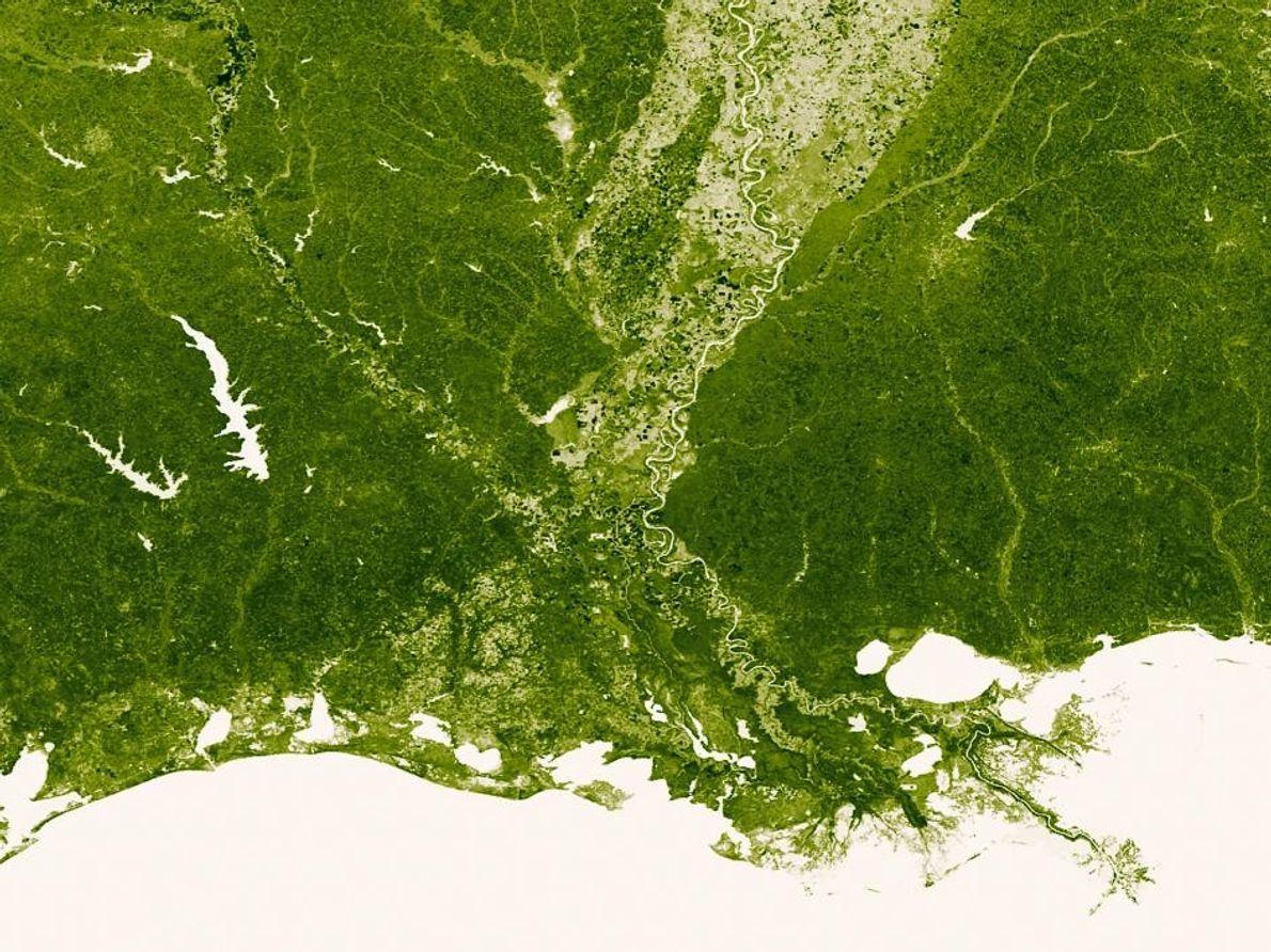 El río Mississippi y sus muchos afluentes, vistos en color verde más claro. También podemos ver …